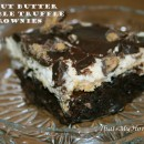 peanut-butter-crumble-truffle-brownies