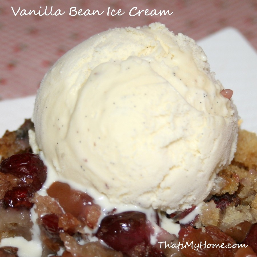 Homemade Vanilla Bean Ice Cream - Recipes Food and Cooking