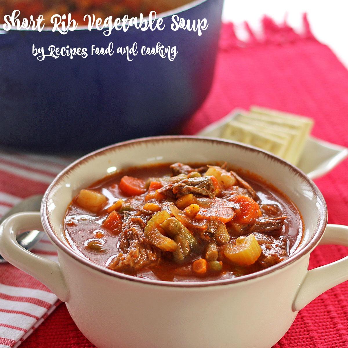 Short Rib Vegetable Soup