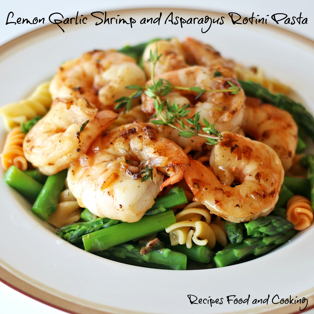 Lemon Garlic Shrimp and Asparagus Rotini Pasta