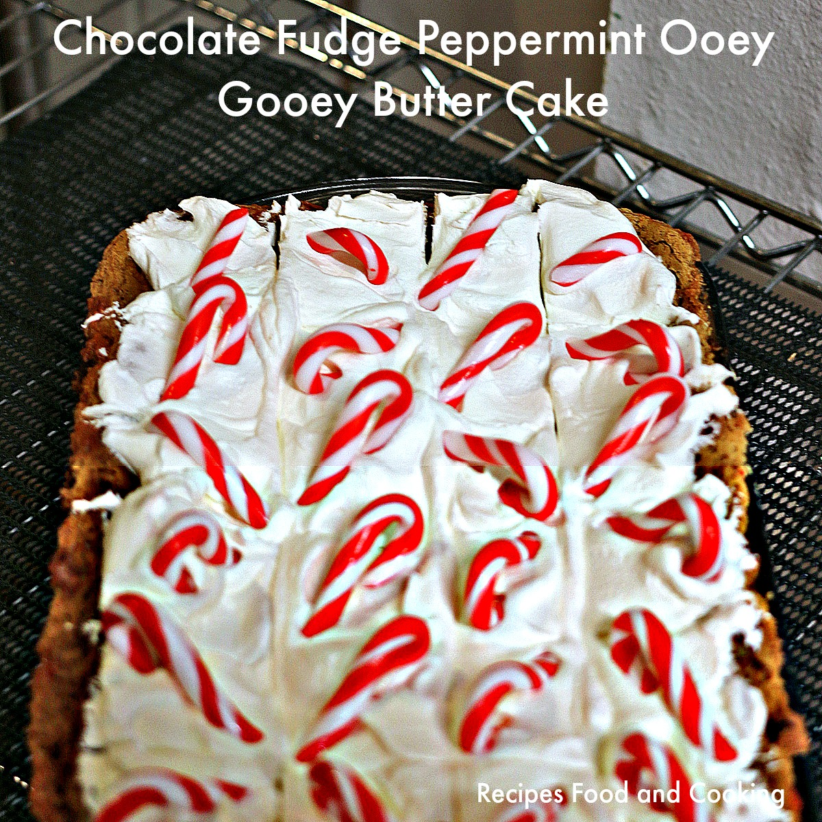 Chocolate Fudge Peppermint Ooey Gooey Butter Cake